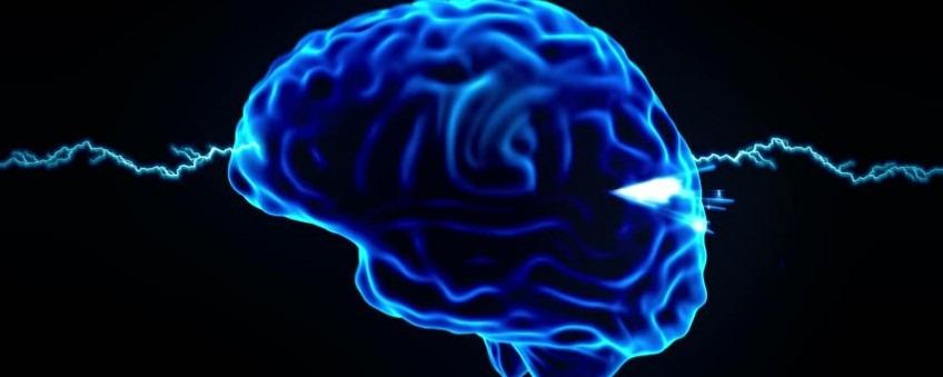 Drupal accessibility brain