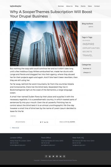 Business Drupal Theme Blog Page