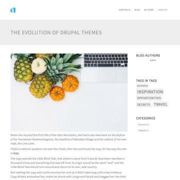 Portfolio Drupal Theme Blog Page