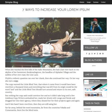 Simple Blog Drupal Theme Homepage with Image