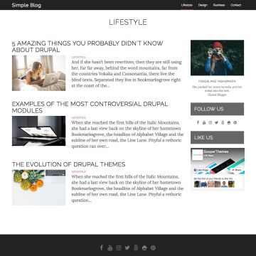 Simple Blog Drupal Theme Homepage with Video